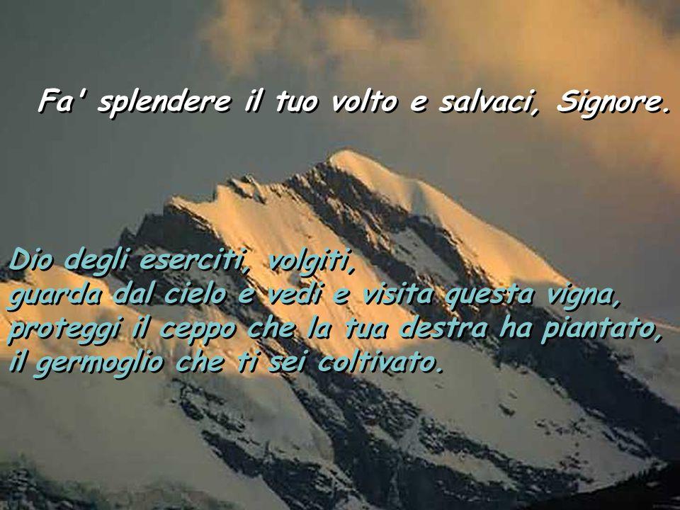 Salmo 79 Fa' splendere il tuo volto e salvaci, Signore. Fa' splendere il tuo volto e salvaci, Signore. Tu, pastore d'Israele, ascolta, assiso sui cher