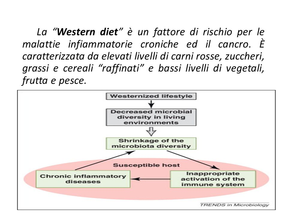 "La ""Western diet"" è un fattore di rischio per le malattie infiammatorie croniche ed il cancro. È caratterizzata da elevati livelli di carni rosse, zuc"