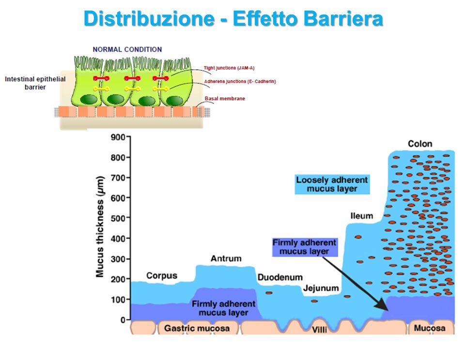 Distribuzione - Effetto Barriera