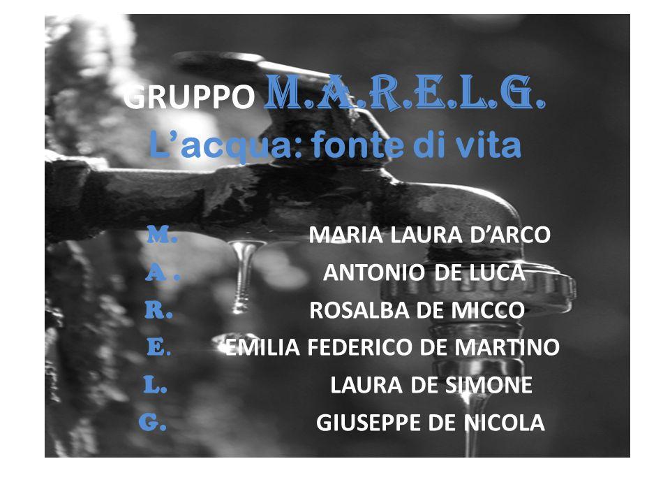 GRUPPO M.A.R.E.L.G. L'acqua: fonte di vita M. MARIA LAURA D'ARCO A. ANTONIO DE LUCA R. ROSALBA DE MICCO E. EMILIA FEDERICO DE MARTINO L. LAURA DE SIMO