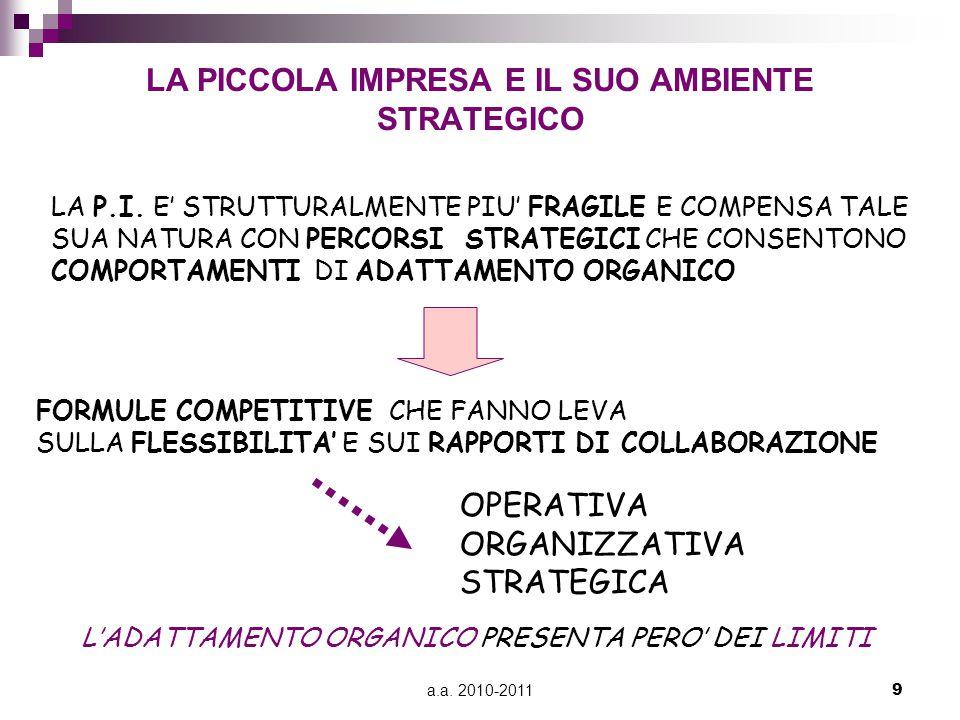 a.a. 2010-20119 LA PICCOLA IMPRESA E IL SUO AMBIENTE STRATEGICO LA P.I.