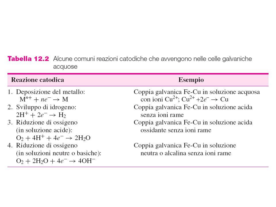 Figura 12.6 - Reazioni elettrochimiche per (a) zinco immerso in acido cloridrico diluito e (b) ferro immerso in una soluzione acquosa a pH neutro contenente ossigeno.