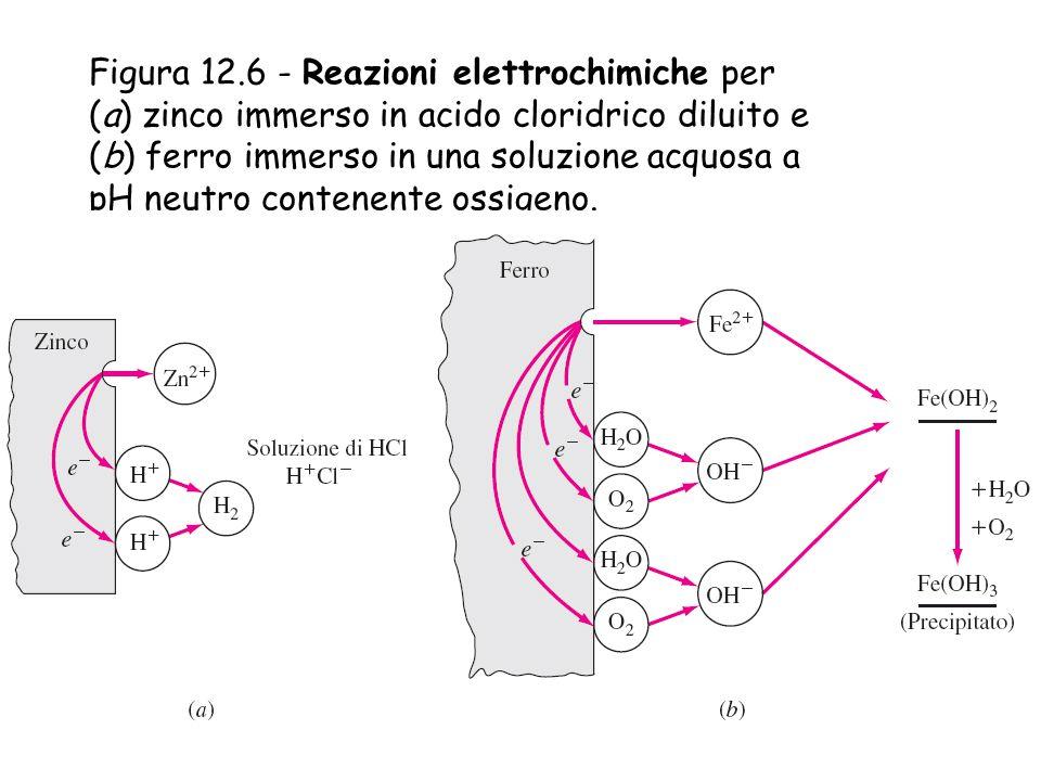 Figura 12.6 - Reazioni elettrochimiche per (a) zinco immerso in acido cloridrico diluito e (b) ferro immerso in una soluzione acquosa a pH neutro cont