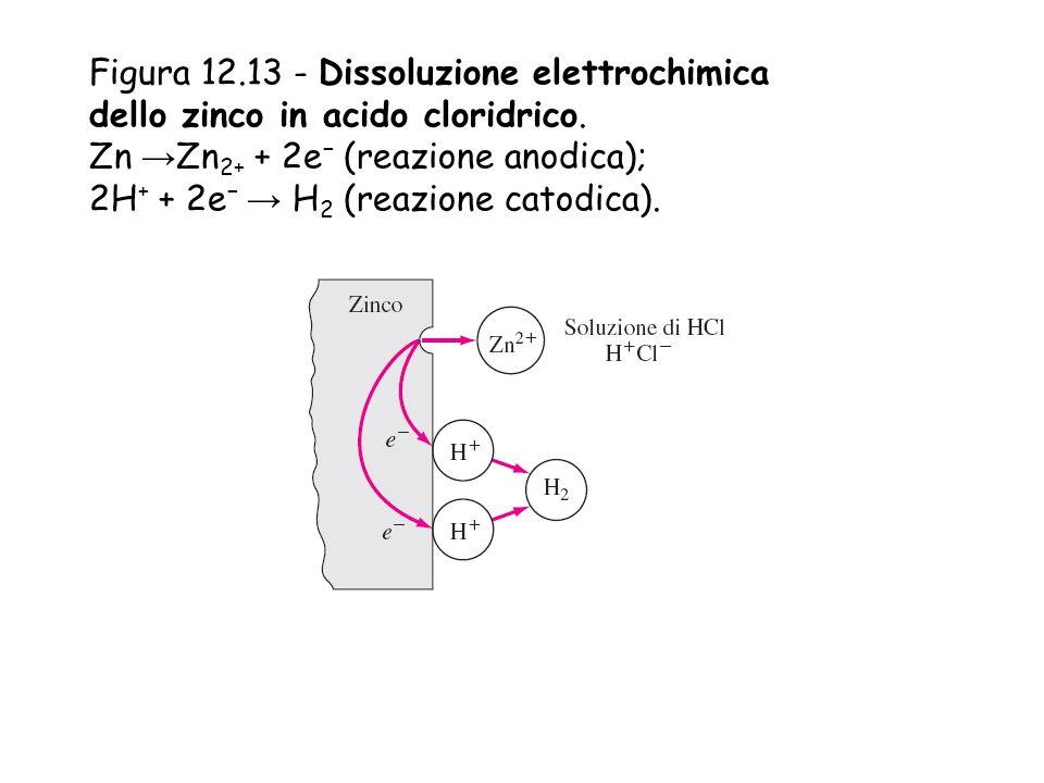 Figura 12.13 - Dissoluzione elettrochimica dello zinco in acido cloridrico. Zn → Zn 2+ + 2e − (reazione anodica); 2H + + 2e − → H 2 (reazione catodica