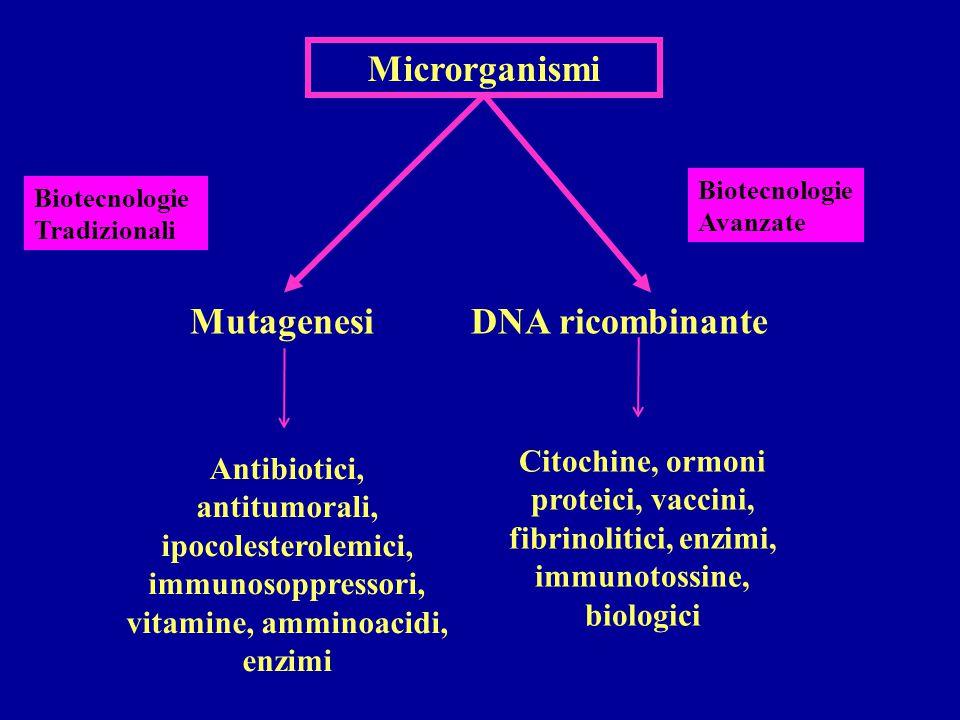 Biotecnologie Avanzate Citochine, ormoni proteici, vaccini, fibrinolitici, enzimi, immunotossine, biologici Biotecnologie Tradizionali Microrganismi MutagenesiDNA ricombinante Antibiotici, antitumorali, ipocolesterolemici, immunosoppressori, vitamine, amminoacidi, enzimi
