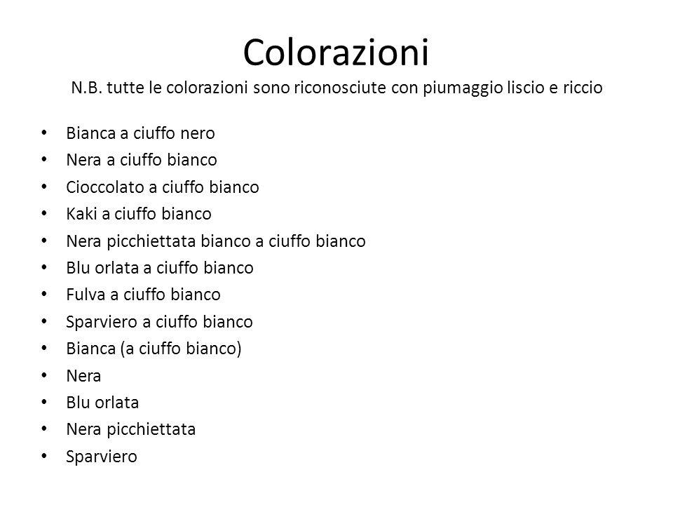 Colorazioni N.B. tutte le colorazioni sono riconosciute con piumaggio liscio e riccio Bianca a ciuffo nero Nera a ciuffo bianco Cioccolato a ciuffo bi