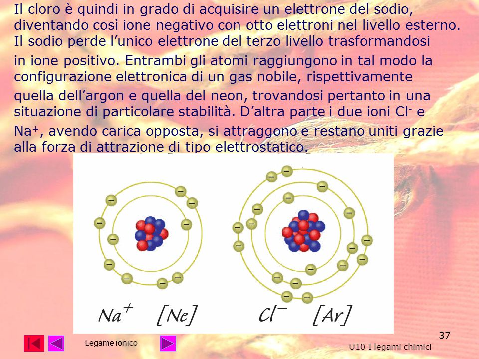 37 Il cloro è quindi in grado di acquisire un elettrone del sodio, diventando così ione negativo con otto elettroni nel livello esterno.