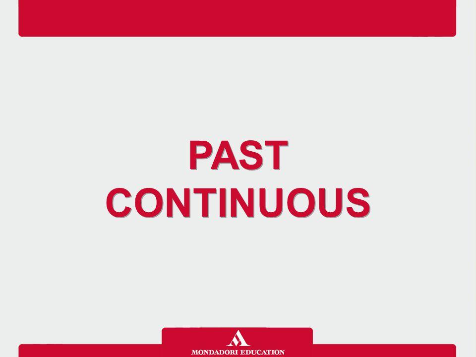 Il Past continuous si usa per descrivere un'azione che si è svolta per un periodo di tempo continuativo nel passato.