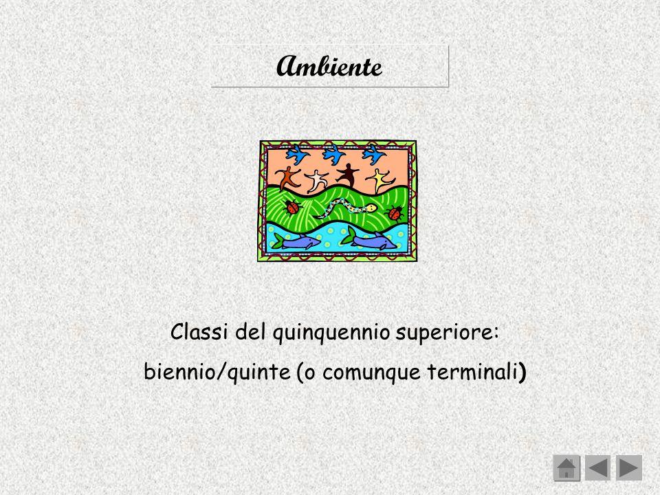 Ambiente Classi del quinquennio superiore: biennio/quinte (o comunque terminali)