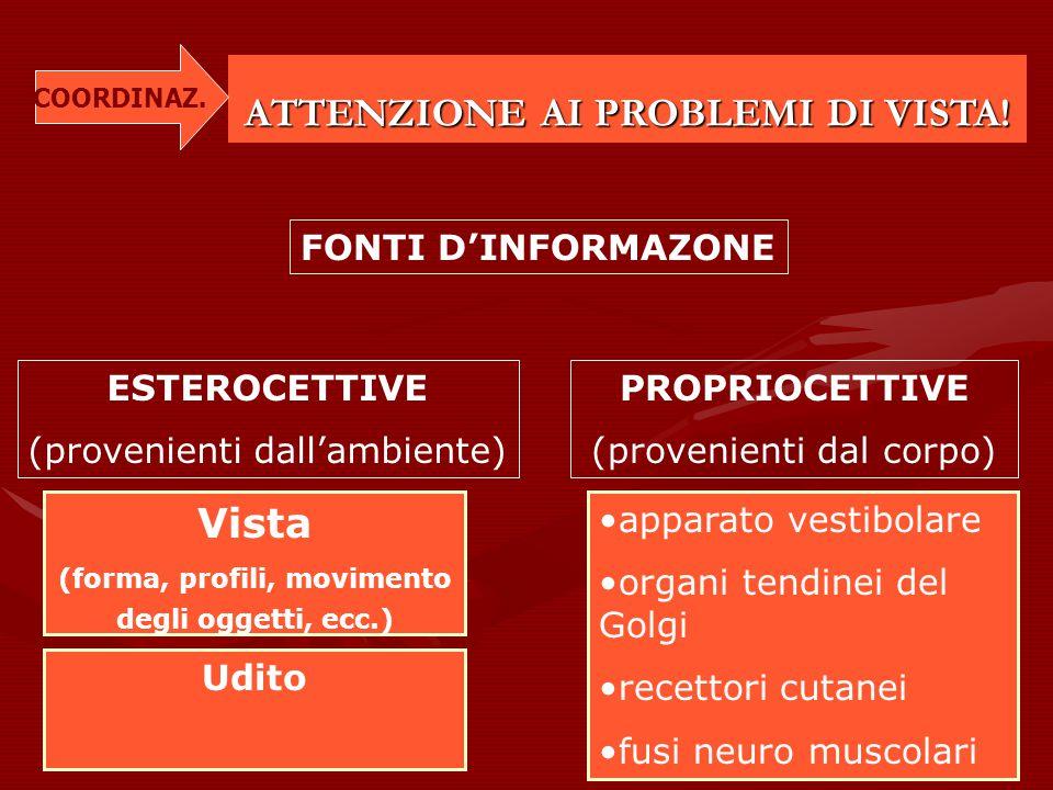 ATTENZIONE AI PROBLEMI DI VISTA! FONTI D'INFORMAZONE ESTEROCETTIVE (provenienti dall'ambiente) PROPRIOCETTIVE (provenienti dal corpo) Vista (forma, pr