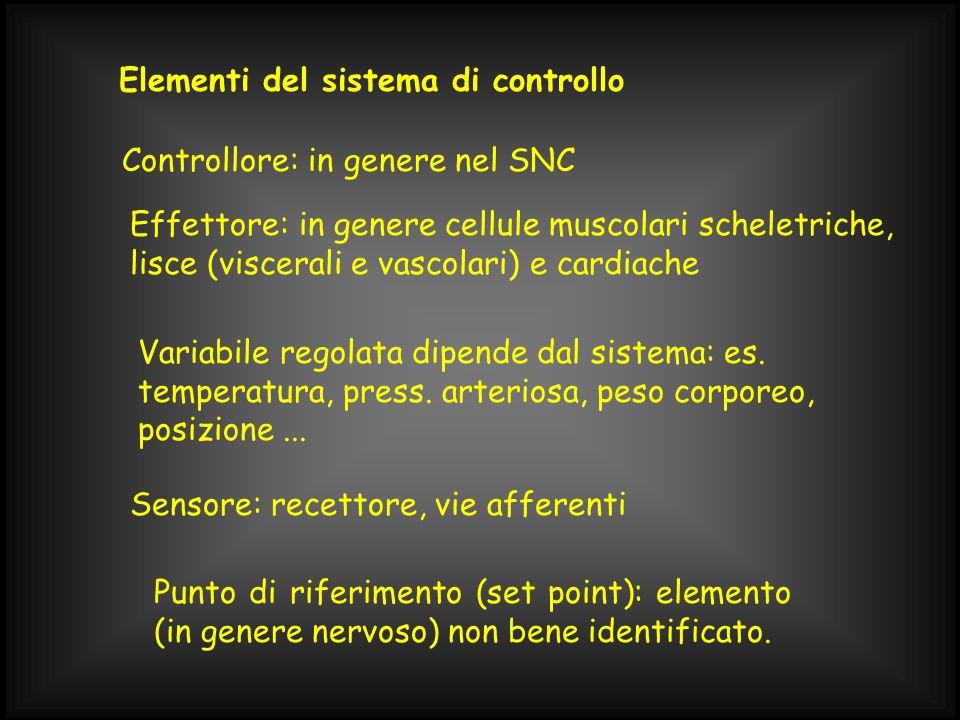 Elementi del sistema di controllo Controllore: in genere nel SNC Effettore: in genere cellule muscolari scheletriche, lisce (viscerali e vascolari) e cardiache Variabile regolata dipende dal sistema: es.