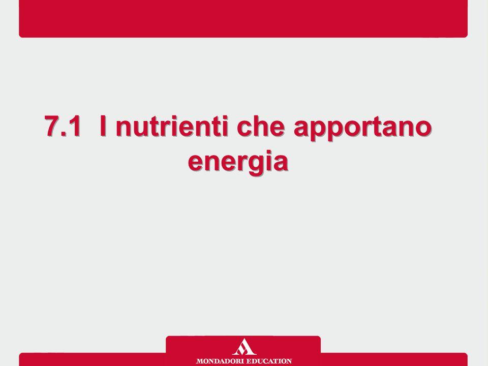 7.1 I nutrienti che apportano energia