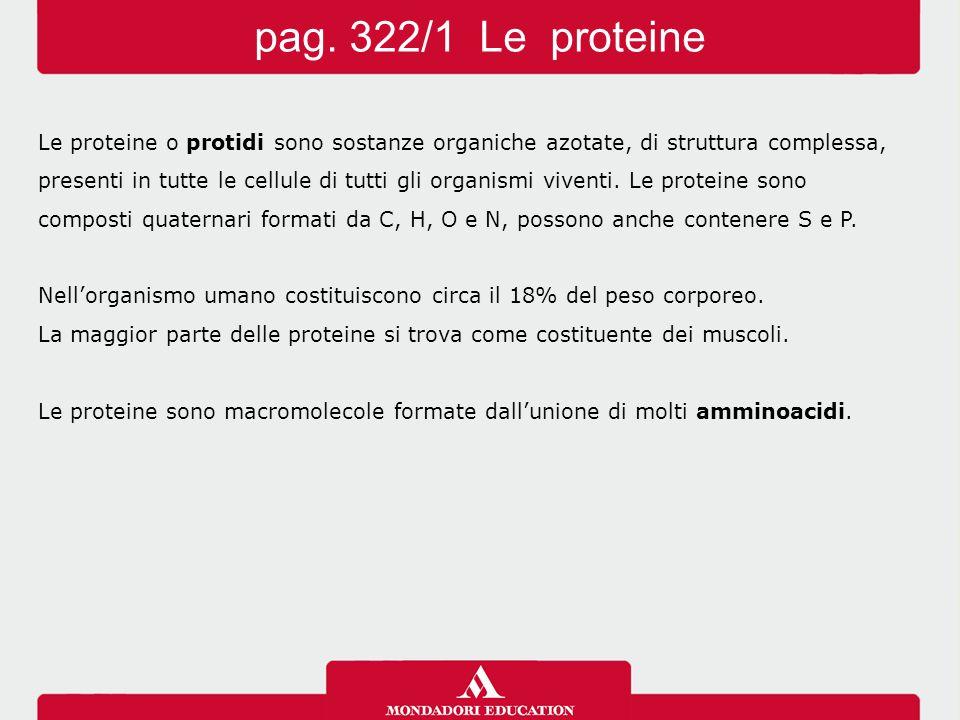 Le proteine o protidi sono sostanze organiche azotate, di struttura complessa, presenti in tutte le cellule di tutti gli organismi viventi. Le protein