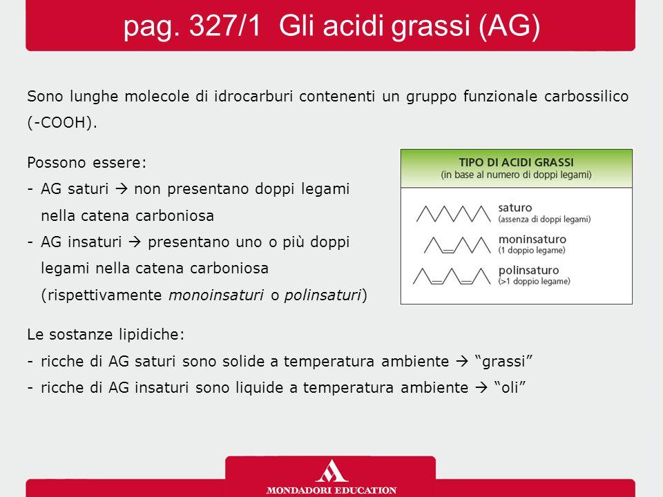 Sono lunghe molecole di idrocarburi contenenti un gruppo funzionale carbossilico (-COOH). Possono essere: -AG saturi  non presentano doppi legami nel