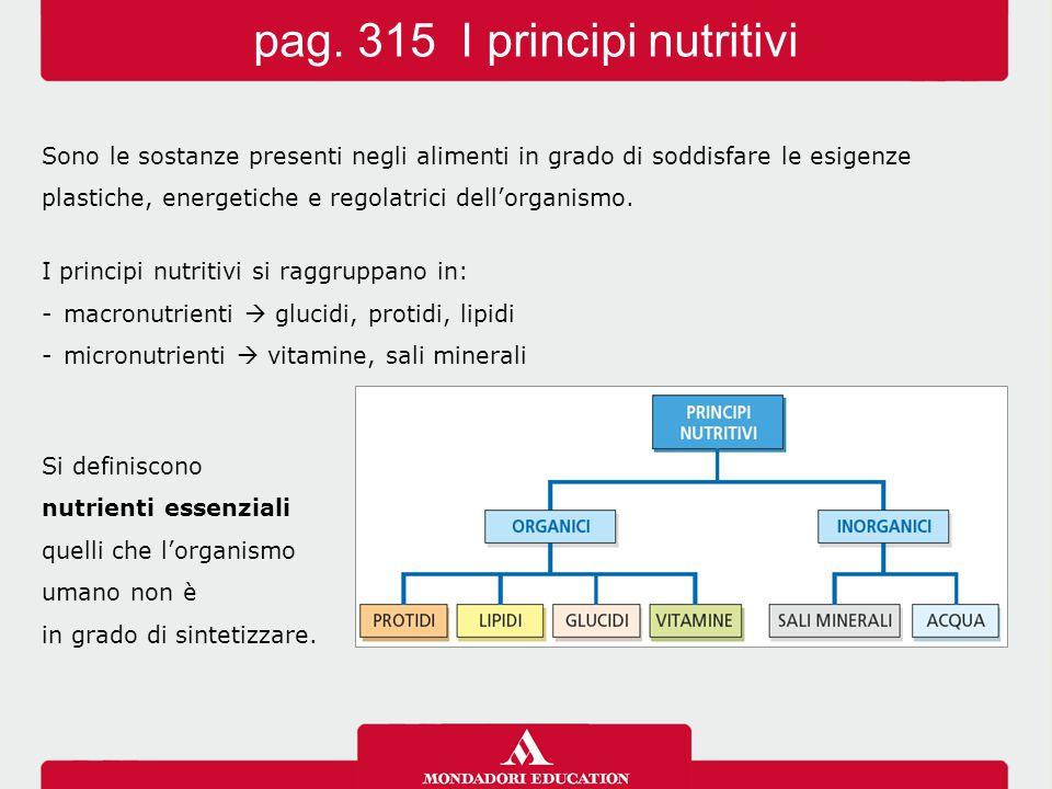 Sono le sostanze presenti negli alimenti in grado di soddisfare le esigenze plastiche, energetiche e regolatrici dell'organismo. I principi nutritivi