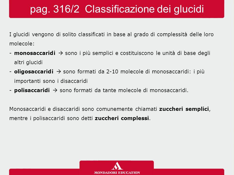 I glucidi vengono di solito classificati in base al grado di complessità delle loro molecole: -monosaccaridi  sono i più semplici e costituiscono le