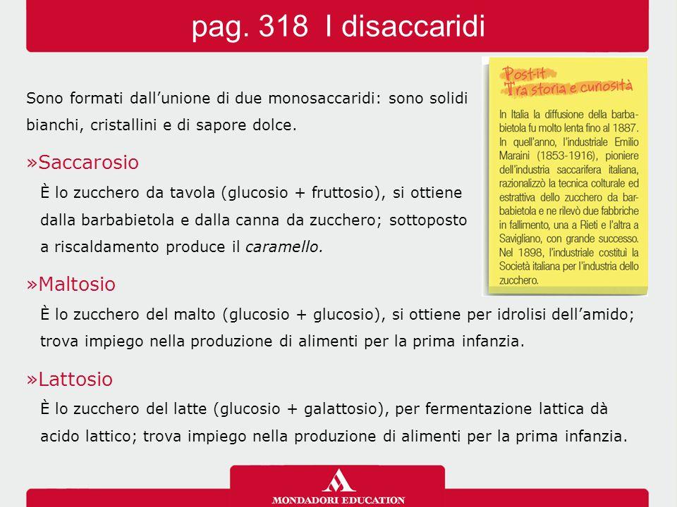 pag.319/1 I polisaccaridi Sono i glucidi più importanti in natura.