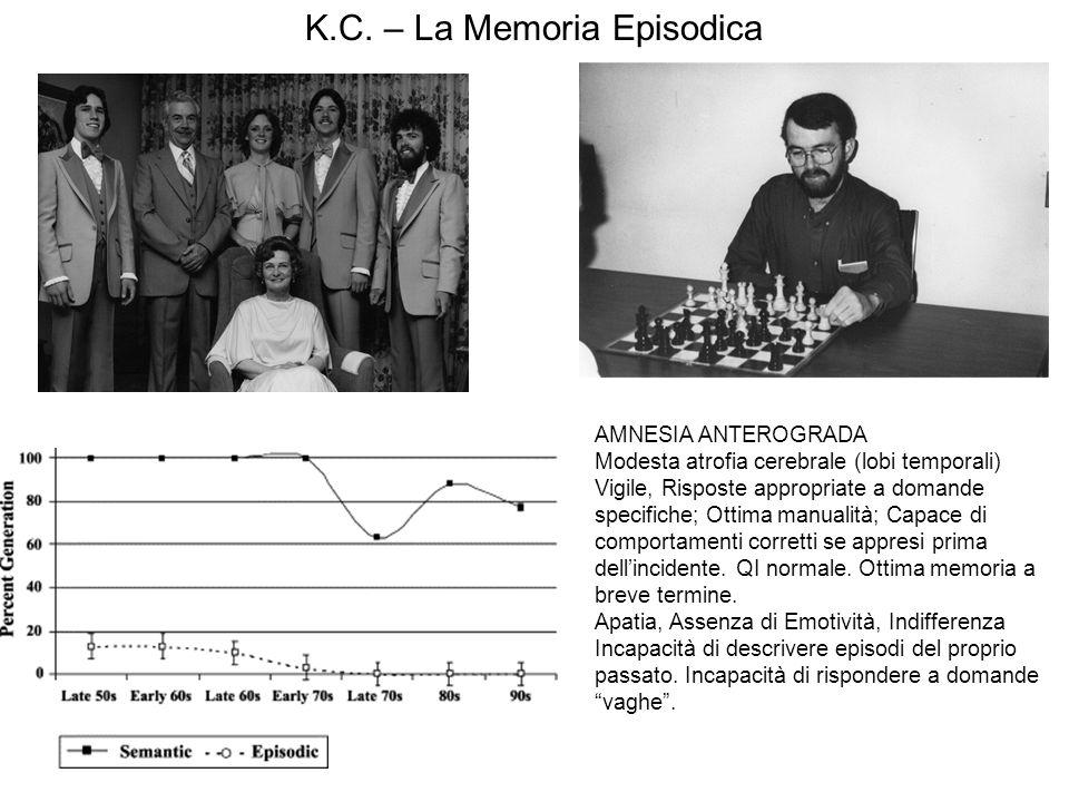 K.C. – La Memoria Episodica AMNESIA ANTEROGRADA Modesta atrofia cerebrale (lobi temporali) Vigile, Risposte appropriate a domande specifiche; Ottima m