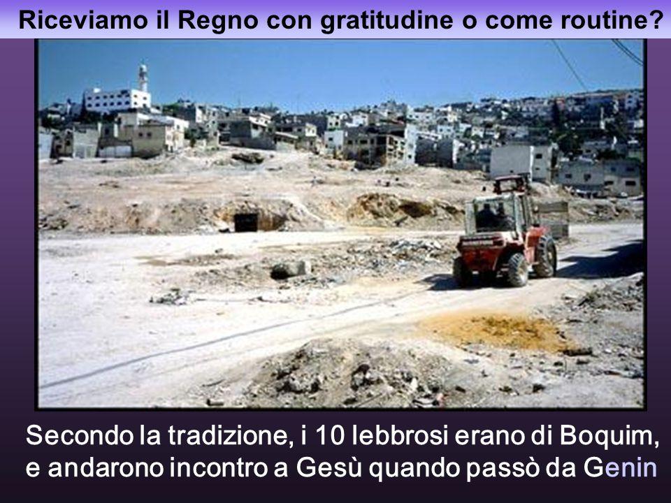 Tutte le fotografie sono di Genin, città tra la Galilea e la Samaria, tra ebrei e arabi, dove recentemente c'è stato un genocidio.