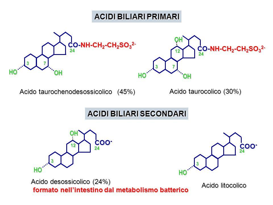 CH 3 HO CH 3 CH–R CH 3 I I I I OH HO CH 3 CH–CH 2 –CH 2 –CH 2 –CH–CH 3 CH 3 I I I I I CH–R CH 3 O I I I I OH HO CH 3 CH–R CH 3 I I I I OH HO I HO CH 3 CH–R CH 3 I I I OH 7  -idrossilasi - Isomerasi - ossidasi 12idrossilasi 1 fase della via biosintetica
