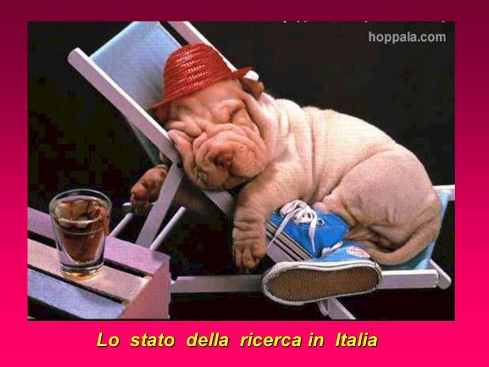 Lo stato della ricerca in Italia