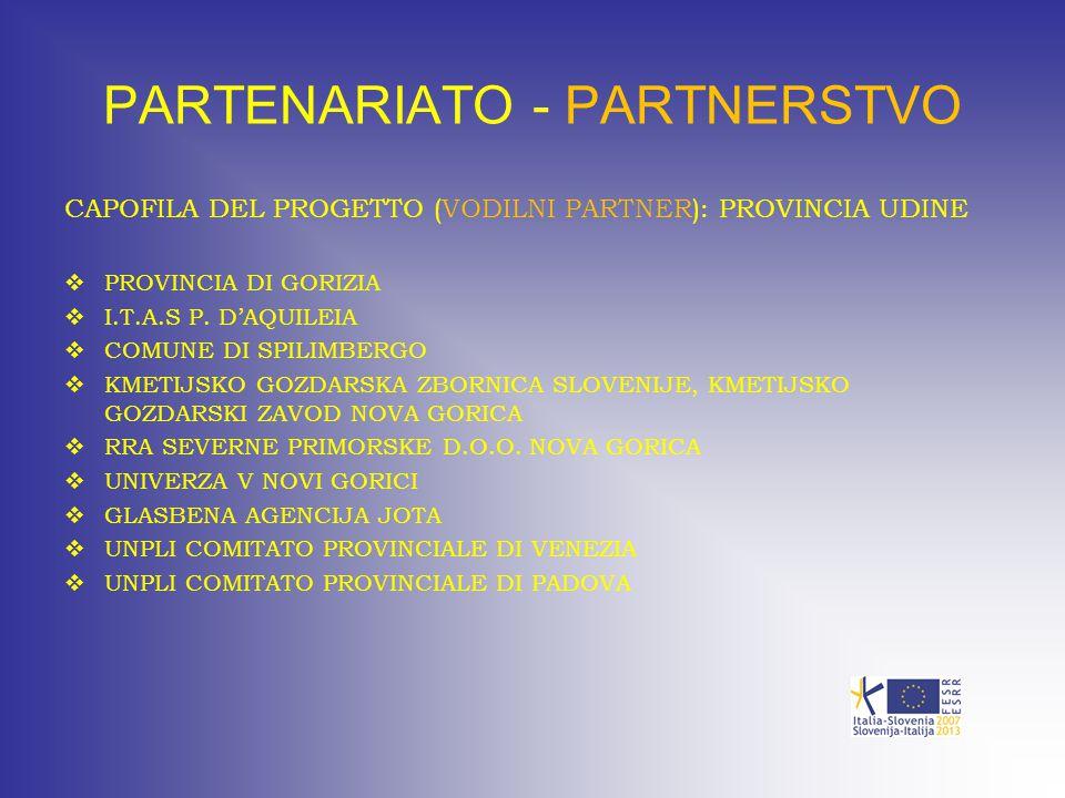 PARTENARIATO - PARTNERSTVO CAPOFILA DEL PROGETTO (VODILNI PARTNER): PROVINCIA UDINE  PROVINCIA DI GORIZIA  I.T.A.S P. D'AQUILEIA  COMUNE DI SPILIMB