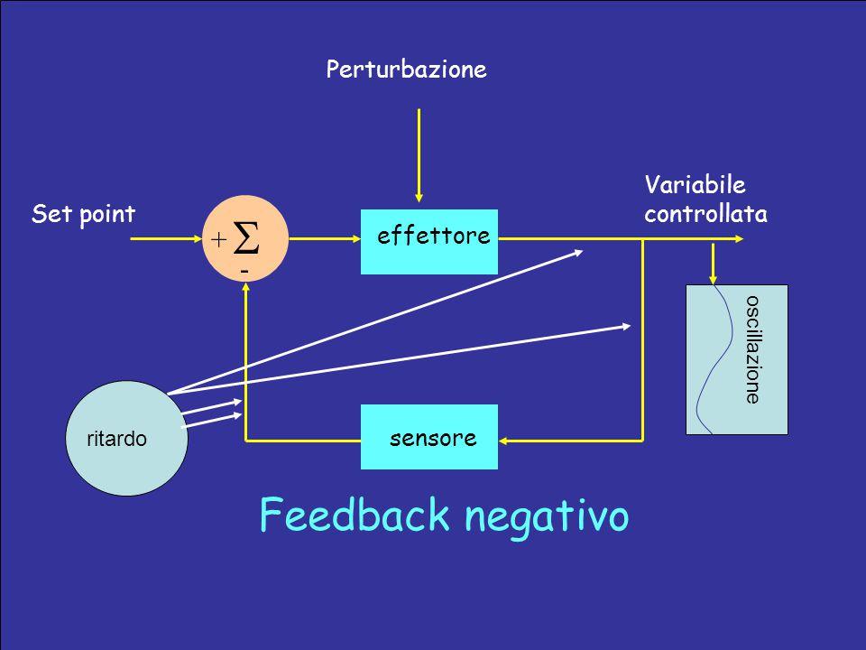 Set point sensore Variabile controllata effettore  + - Perturbazione Feedback negativo ritardo oscillazione