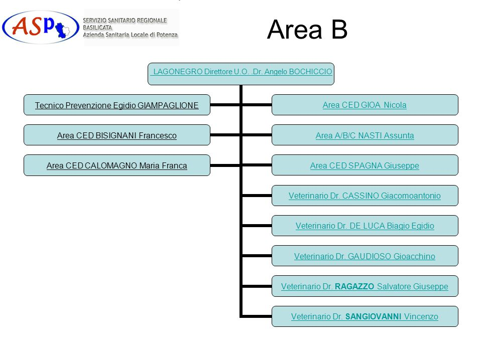 Area B LAGONEGRO Direttore U.O..Dr.Angelo BOCHICCIO Veterinario Dr.