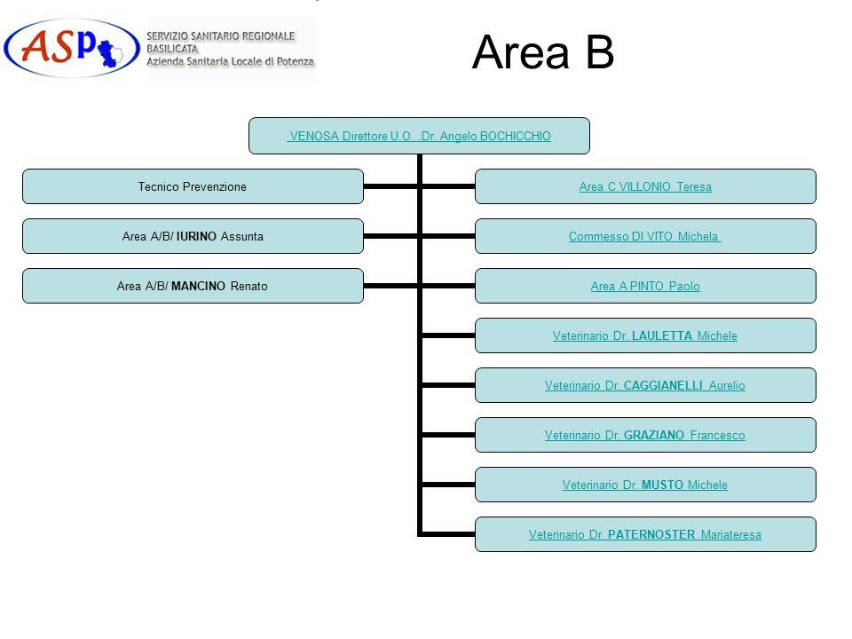 Area B VENOSA Direttore U.O..Dr.Angelo BOCHICCHIO Veterinario Dr.