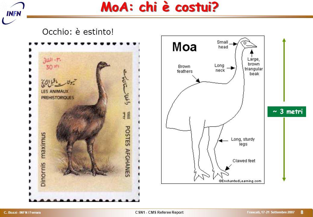CSN1 - CMS Referee Report C. Bozzi - INFN / Ferrara Frascati, 17-21 Settembre 2007 8 MoA: chi è costui? Occhio: è estinto! ~ 3 metri