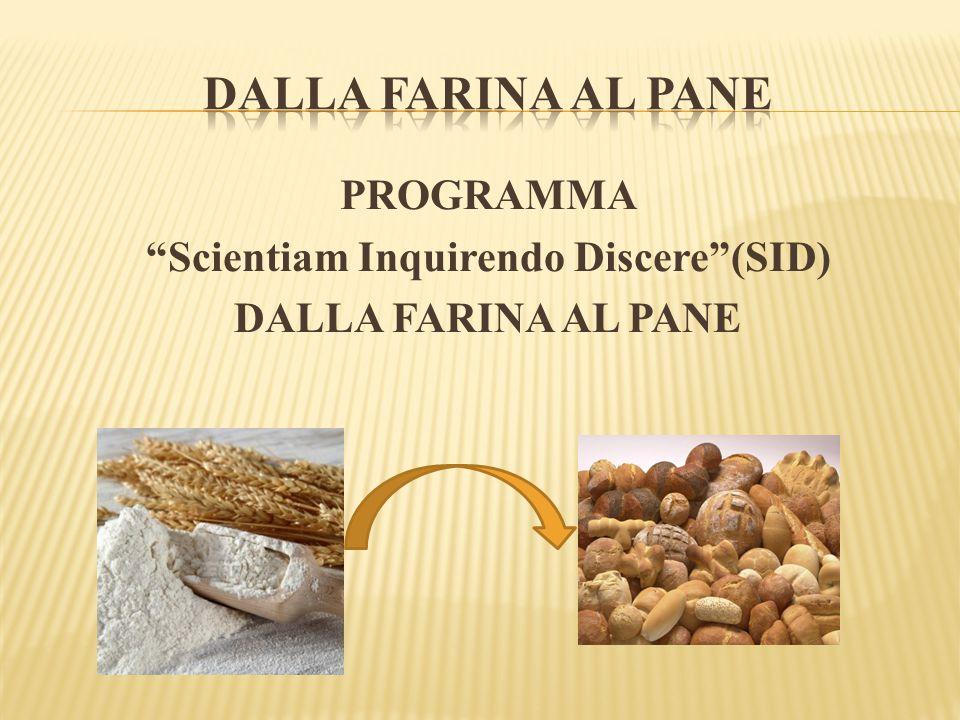 """PROGRAMMA """"Scientiam Inquirendo Discere""""(SID) DALLA FARINA AL PANE"""