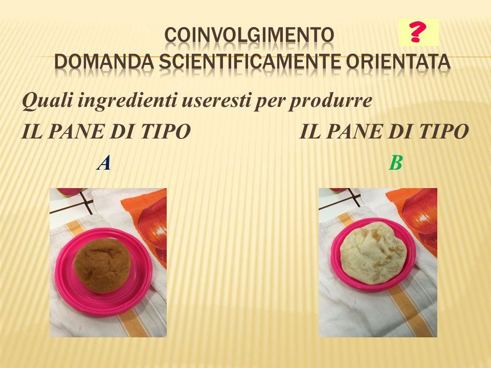 Quali ingredienti useresti per produrre IL PANE DI TIPO A B