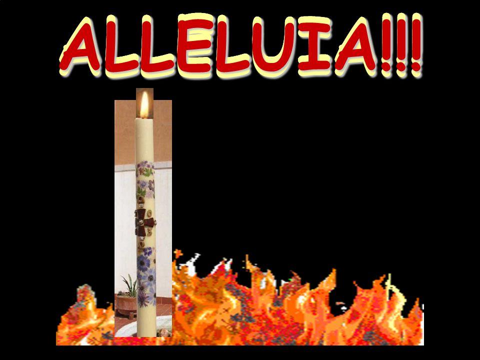 ALLELUIA!!!ALLELUIA!!!ALLELUIA!!!ALLELUIA!!!ALLELUIA!!!