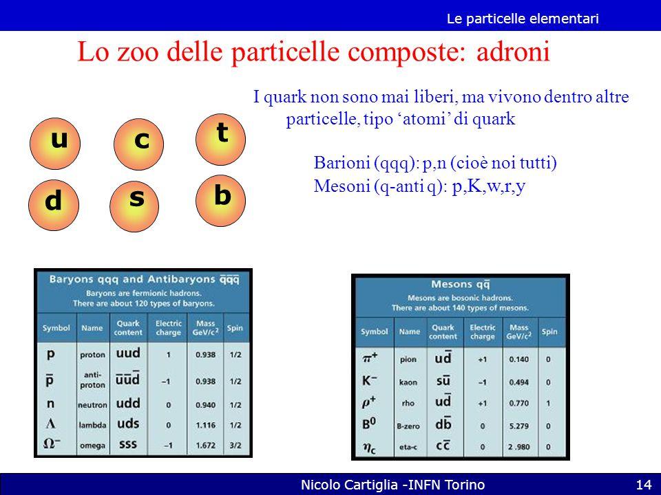 Le particelle elementari Nicolo Cartiglia -INFN Torino14 s c t b u d Lo zoo delle particelle composte: adroni I quark non sono mai liberi, ma vivono dentro altre particelle, tipo 'atomi' di quark Barioni (qqq): p,n (cioè noi tutti) Mesoni (q-anti q): p,K,w,r,y