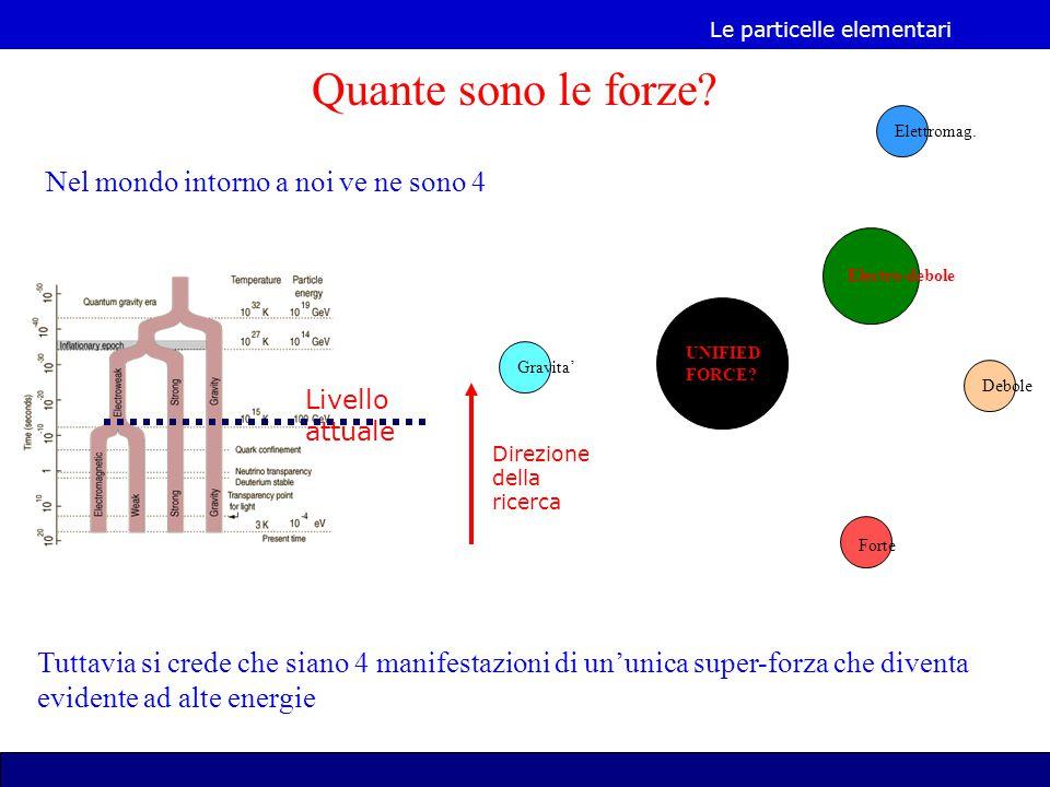 Le particelle elementari Debole Forte Gravita' Elettromag.