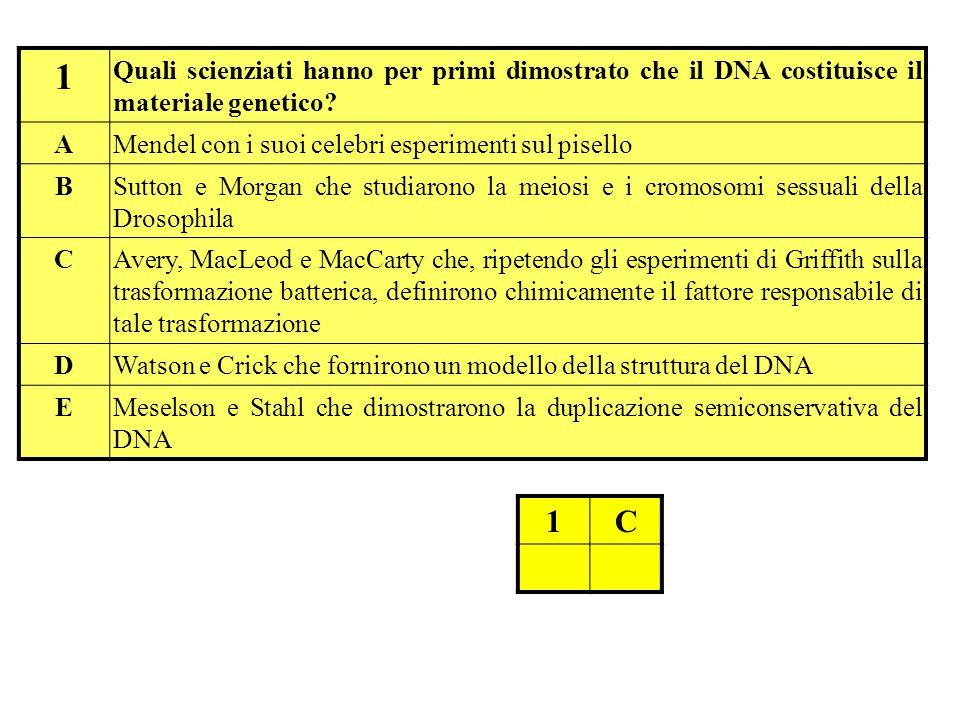 1 Quali scienziati hanno per primi dimostrato che il DNA costituisce il materiale genetico.