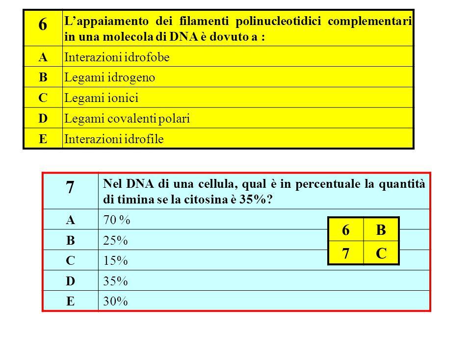 6 L'appaiamento dei filamenti polinucleotidici complementari in una molecola di DNA è dovuto a : AInterazioni idrofobe BLegami idrogeno CLegami ionici DLegami covalenti polari EInterazioni idrofile 7 Nel DNA di una cellula, qual è in percentuale la quantità di timina se la citosina è 35%.