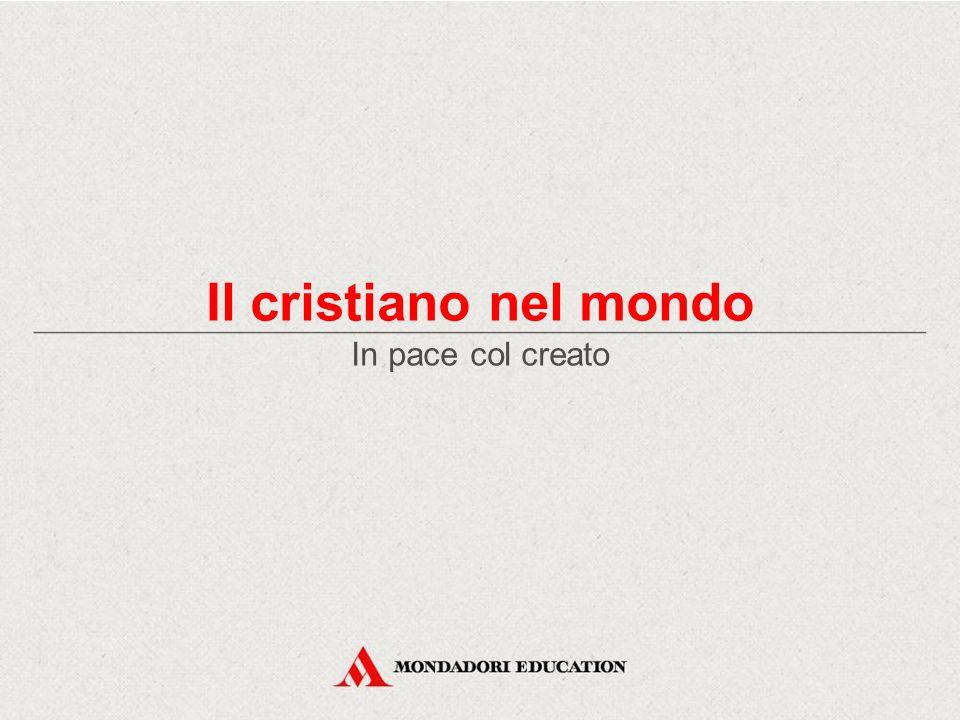 L'uomo, custode della creazione Dal cielo all'uomo, storia della creazione In pace col creato Il messaggio di papa Francesco per la Giornata Mondiale della Pace 2014 Il cristiano nel mondo