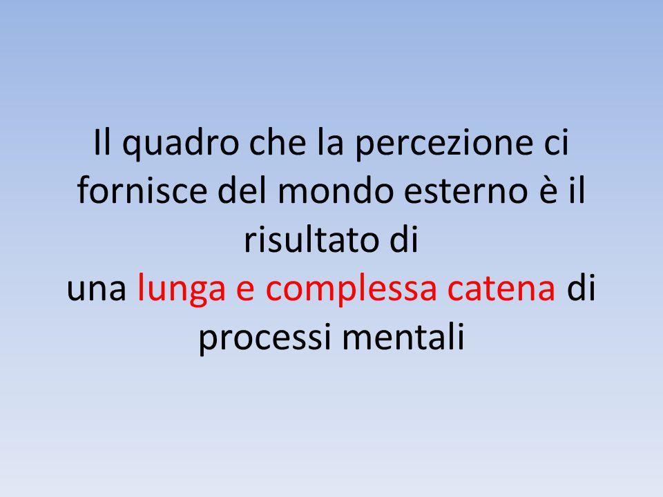 Il quadro che la percezione ci fornisce del mondo esterno è il risultato di una lunga e complessa catena di processi mentali