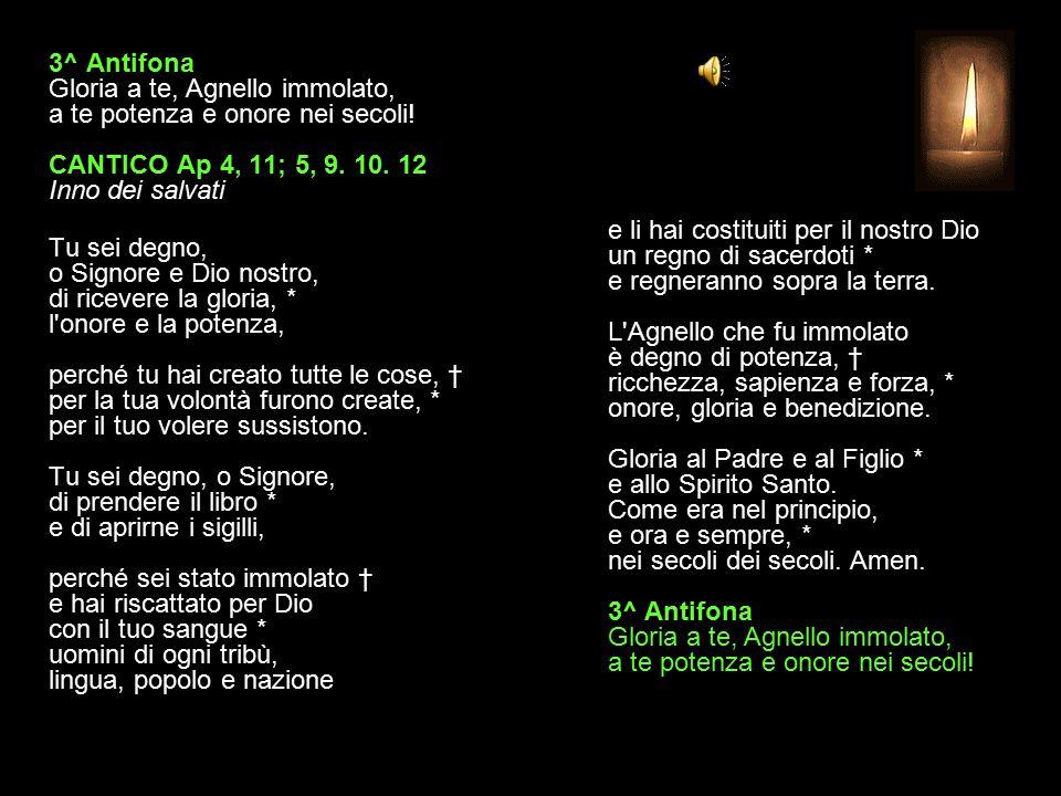 2^ Antifona Radunate i vostri tesori in cielo, dice il Signore.