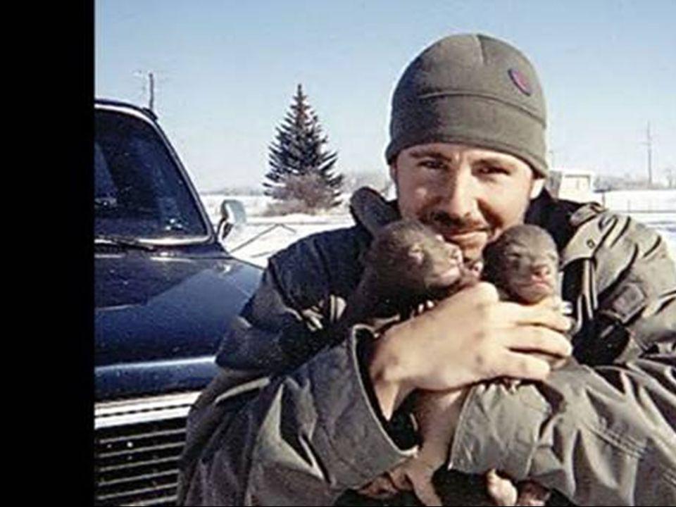 Questo ragazzo ha trovato due cuccioli di orso accanto alla loro madre morta in Alaska.