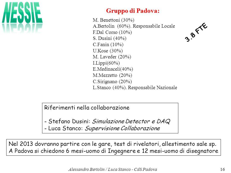 Gruppo di Padova: M.Benettoni (30%) A.Bertolin (60%).