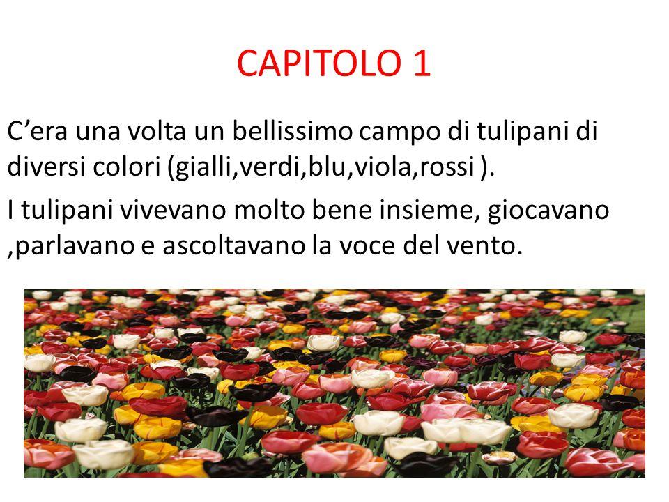 CAPITOLO 1 C'era una volta un bellissimo campo di tulipani di diversi colori (gialli,verdi,blu,viola,rossi ).