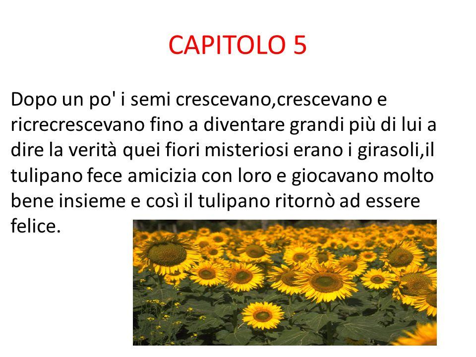 CAPITOLO 4 Ma un giorno il contadino passò e seminò qualcosa di strano dei semi che non sapeva quali erano.