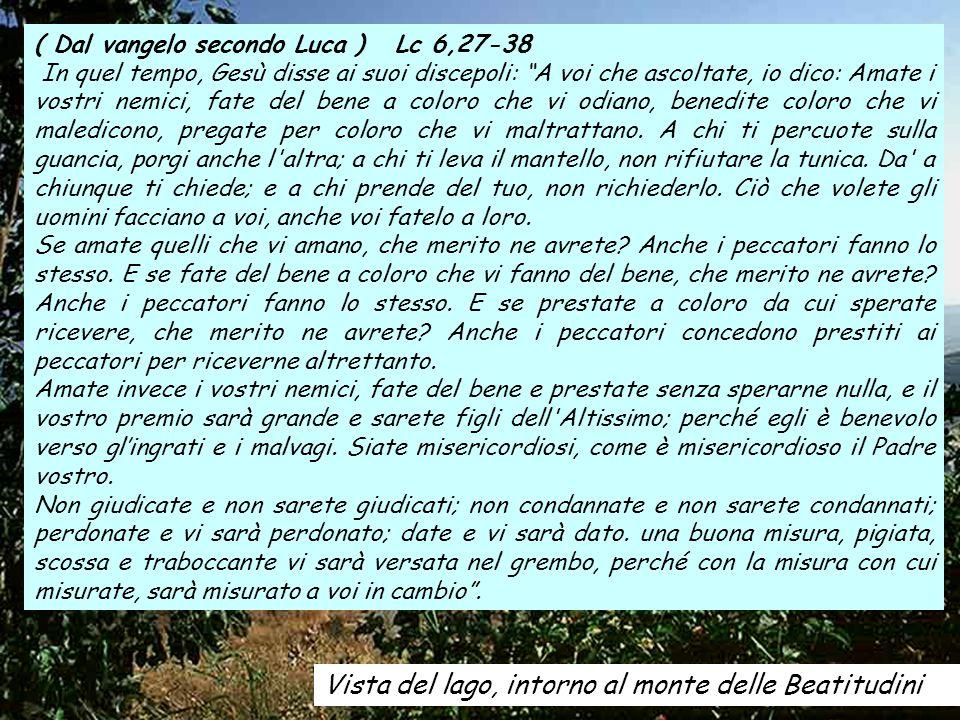 ALLELUIA Gv 13,34 Vi dò un comandamento nuovo , dice il Signore: che vi amiate a vicenda, come io ho amato voi .