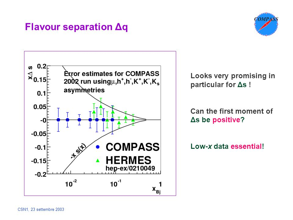 CSN1, 23 settembre 2003 Flavour separation Δq Looks very promising in particular for Δs ! Can the first moment of Δs be positive? Low-x data essential