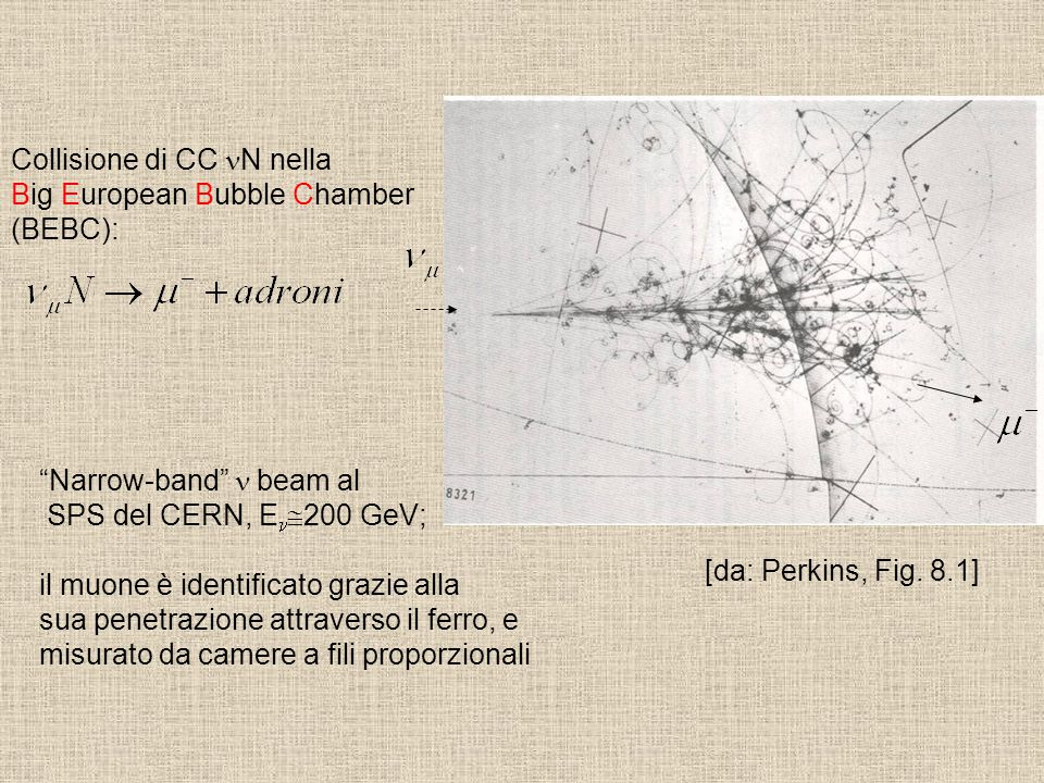 "[da: Perkins, Fig. 8.1] Collisione di CC N nella Big European Bubble Chamber (BEBC): ""Narrow-band"" beam al SPS del CERN, E  200 GeV; il muone è ident"
