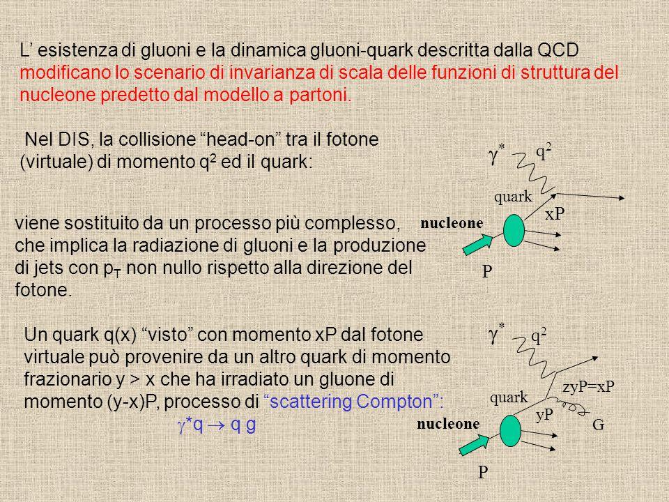 L' esistenza di gluoni e la dinamica gluoni-quark descritta dalla QCD modificano lo scenario di invarianza di scala delle funzioni di struttura del nu