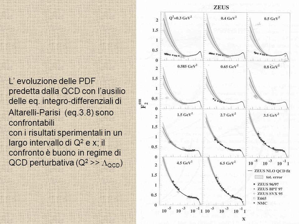 L' evoluzione delle PDF predetta dalla QCD con l'ausilio delle eq. integro-differenziali di Altarelli-Parisi (eq.3.8) sono confrontabili con i risulta