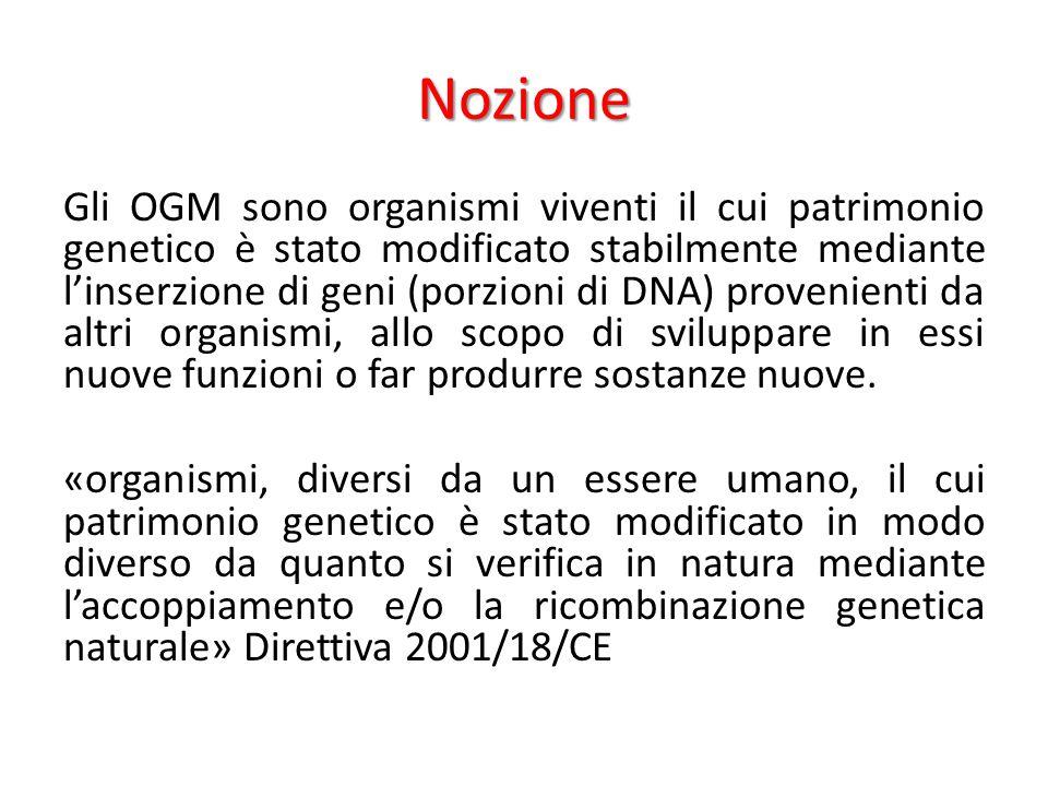 Nozione Gli OGM sono organismi viventi il cui patrimonio genetico è stato modificato stabilmente mediante l'inserzione di geni (porzioni di DNA) prove